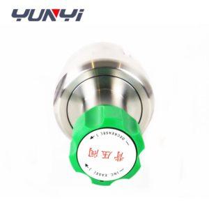 Single stage gasoline pressure regulator
